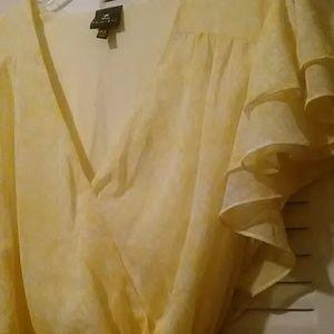 Disney Princess Dresses - Adult Women's Disney Princess Belle Dress XX